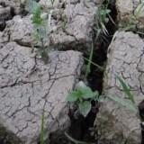 GWP CEE Regional Workshop on Integrated Drought Management, 5-6 OctoberBratislava